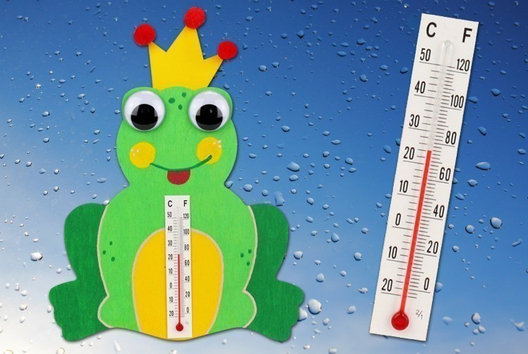 Thermomètre grenouille - La météo - 10doigts.fr