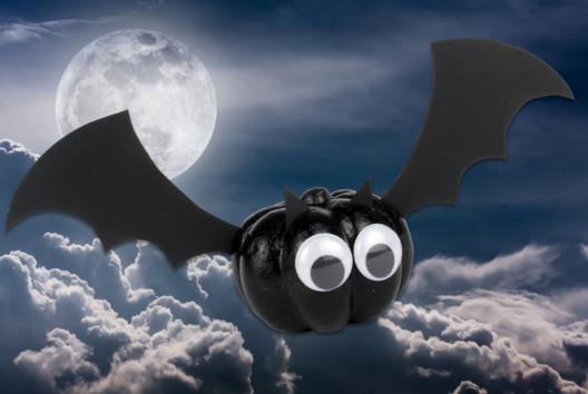 Chauve-souris - Tutos Halloween - 10doigts.fr