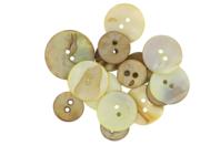 Boutons de nacre beige - 15 pièces - Boutons - 10doigts.fr