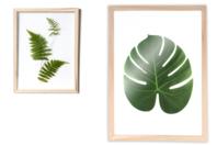 Cadre herbier format A4 - Cadres photos - 10doigts.fr
