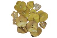 Boutons de nacre camaïeu beige - Set de 16 - Boutons - 10doigts.fr