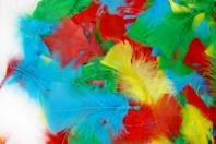 Plumes couleurs vives - Set d'environ 270 plumes - Plumes - 10doigts.fr
