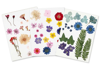 Fleurs séchées - 3 Planches - Fleurs séchées, pommes de pin - 10doigts.fr