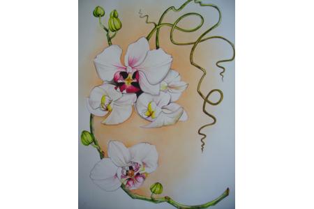 orchidée - Peinture - 10doigts.fr