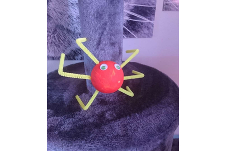 Araignée - Créations d'enfant - 10doigts.fr