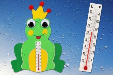 Thermomètre grenouille - Activités enfantines – 10doigts.fr