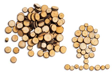 Rondelles de bois naturelles - Décorations en Bois – 10doigts.fr