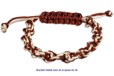 Cordons queue de rat - Couleurs assorties - Fils en Satin et queue de rat – 10doigts.fr