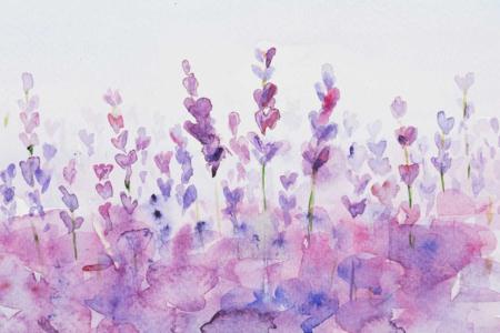 Boite aquarelle + pinceau - Peinture Aquarelle – 10doigts.fr