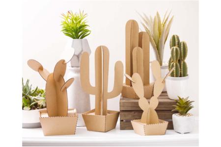 Cactus en carton à assembler - Set de 4 - Objets décoratifs en carton – 10doigts.fr