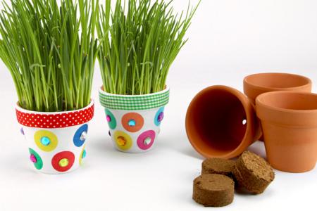 décorer un pot de ciboulette - Tête à Modeler