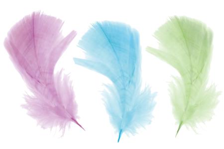 Plumes couleurs pastel - Set d'environ 50 plumes - Plumes – 10doigts.fr