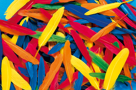 Plumes indiennes multicolores - Set d'environ 120 plumes - Plumes – 10doigts.fr
