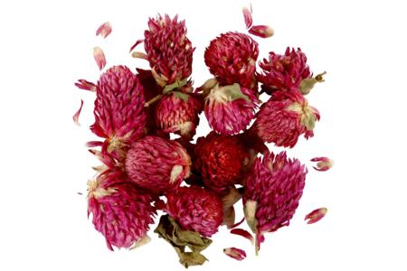 Fleurs séchées - Variété au choix - Fleurs séchées, pommes de pin – 10doigts.fr