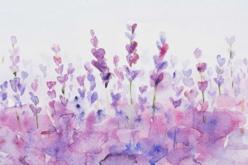 Boite aquarelle + pinceau - Peinture Aquarelle – 10doigts.fr - 2