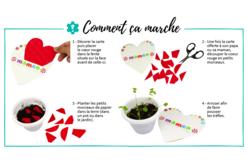 Cartes coeur à planter dans la terre - Lot de 6 - Cartes et poèmes de fêtes – 10doigts.fr - 2
