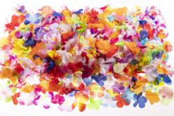 Fleurs en soie synthétique - Set de 600 - Fleurs et feuilles – 10doigts.fr