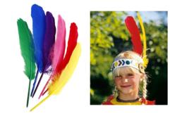 Grandes plumes indiennes assorties - Set de 36 plumes - Plumes – 10doigts.fr - 2