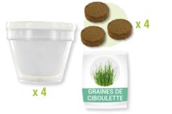 Kit du petit Jardinier : Ciboulette - 4 pots - Graines à planter – 10doigts.fr - 2