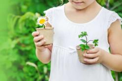 """Kit """"horticulteur"""" - 6 pots - Supports en Céramique et Terre Cuite – 10doigts.fr - 2"""