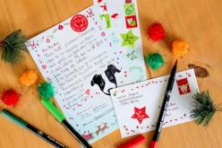Lettres au père Noël - Lot de 6 - Kits d'activités Noël – 10doigts.fr - 2