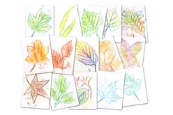 Plaques dessin relief feuilles d'arbres - Set de 16 - Plaque relief – 10doigts.fr - 2