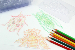 Plaques dessin relief insectes - Set de 16 - Plaque relief – 10doigts.fr - 2