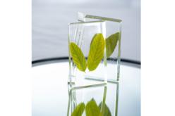 Kit Résine cristal BIO - 150 ml - Résine – 10doigts.fr - 2