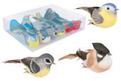 Oiseaux colorés sur pince - Set de 10 - Décorations à coller – 10doigts.fr