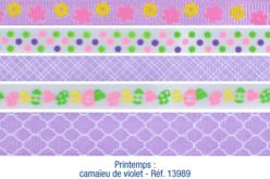 Set de 5 rubans en camaïeu violet