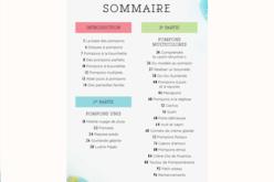 Livre : POMPOMANIA - Livres Laine et Tricot – 10doigts.fr - 2
