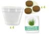 Kits du petit Jardinier : Ciboulette - 4 pots - Graines à planter – 10doigts.fr
