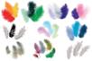 Plumes camaïeu de couleurs au choix - Set d'environ 50 plumes - Plumes - 10doigts.fr