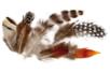 Plumes naturelles - Set d'environ 144 plumes - Plumes – 10doigts.fr