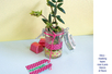 Pot à épices rond en verre - Déco de la maison – 10doigts.fr