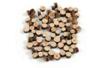 Rondelles bois (Ø 4 mm à 1 cm - Épaisseur : 5 mm) - environ 700 pièces - Décorations en Bois 33093 - 10doigts.fr