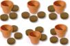 Kit horticulteur : 6 pots en terre cuite + 12 pastilles de terreau compressé - Supports en Céramique et Terre Cuite 11581 - 10doigts.fr