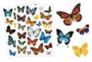 Gommettes papillons réalistes - gommettes - Gommettes réalistes - 10doigts.fr