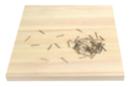 String Art - Support bois 20 x 20 cm + 60 clous - String Art - 10doigts.fr