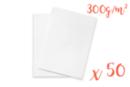Carte en papier bristol 21 x 29.7 cm - 50 feuilles - Ramettes de papiers - 10doigts.fr
