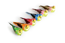 Oiseaux colorés sur pince - Set de 6  - Décorations à coller - 10doigts.fr