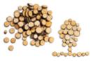 Rondelles de bois (Ø 7 mm à 2,5 cm - Épaisseur : 4 mm) - environ 100 pièces - Décorations en Bois - 10doigts.fr